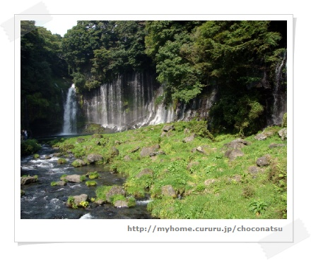 image4680429.jpg