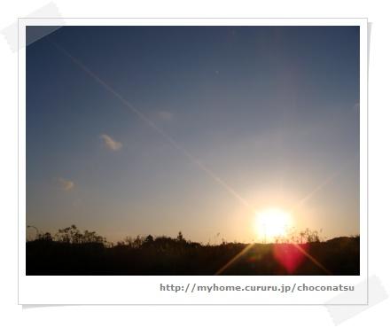 image5462210.jpg
