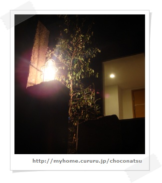 image9842782.jpg