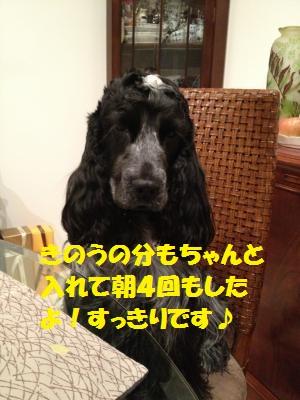 IMG_0235_convert_20120318120520.jpg