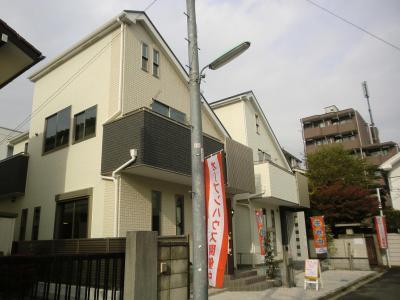 ecomokamisagi448304790man1.jpg