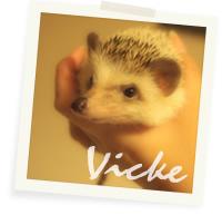 Vicke
