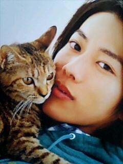 猫好きな佐藤健