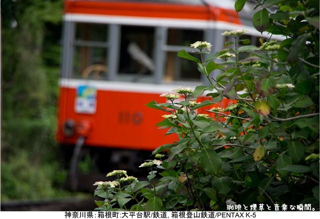 s-14_20120729113134.jpg