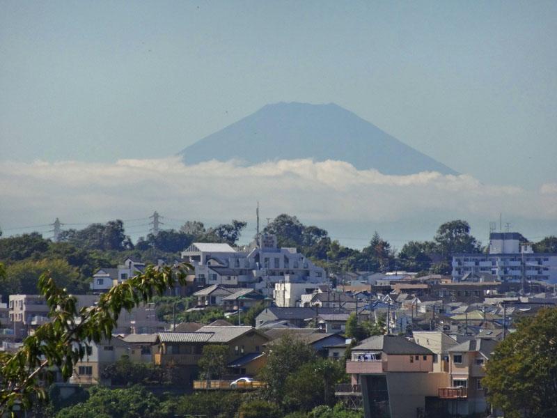 130927彼岸花、どんぐり、富士山3