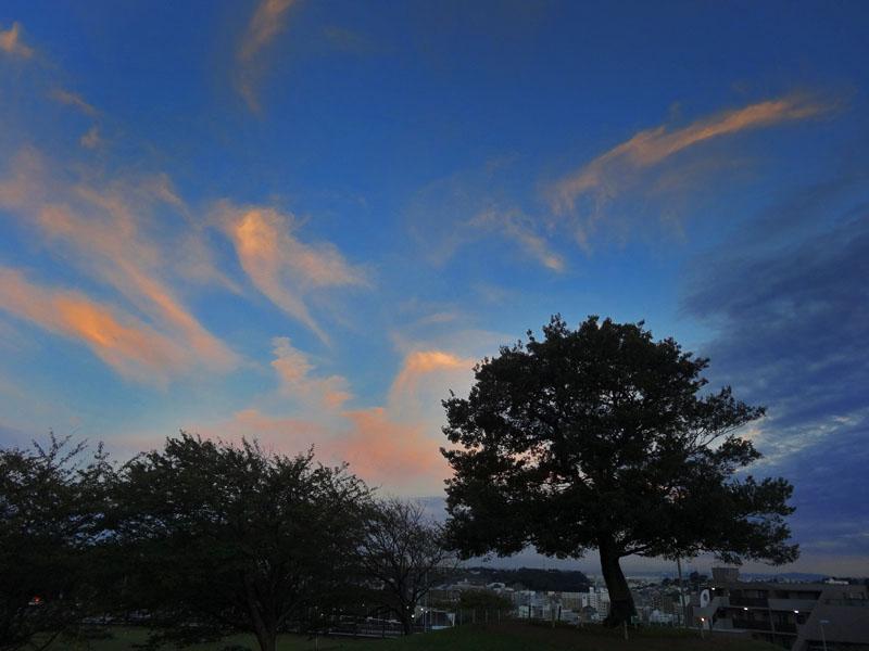 130902今日の虹と夕空と榎の丘3