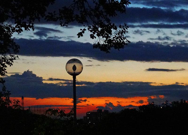 130902今日の虹と夕空と榎の丘7
