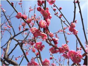 春240320_04