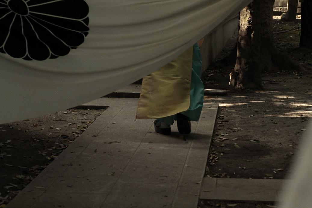 白峯神宮暖簾ブログ