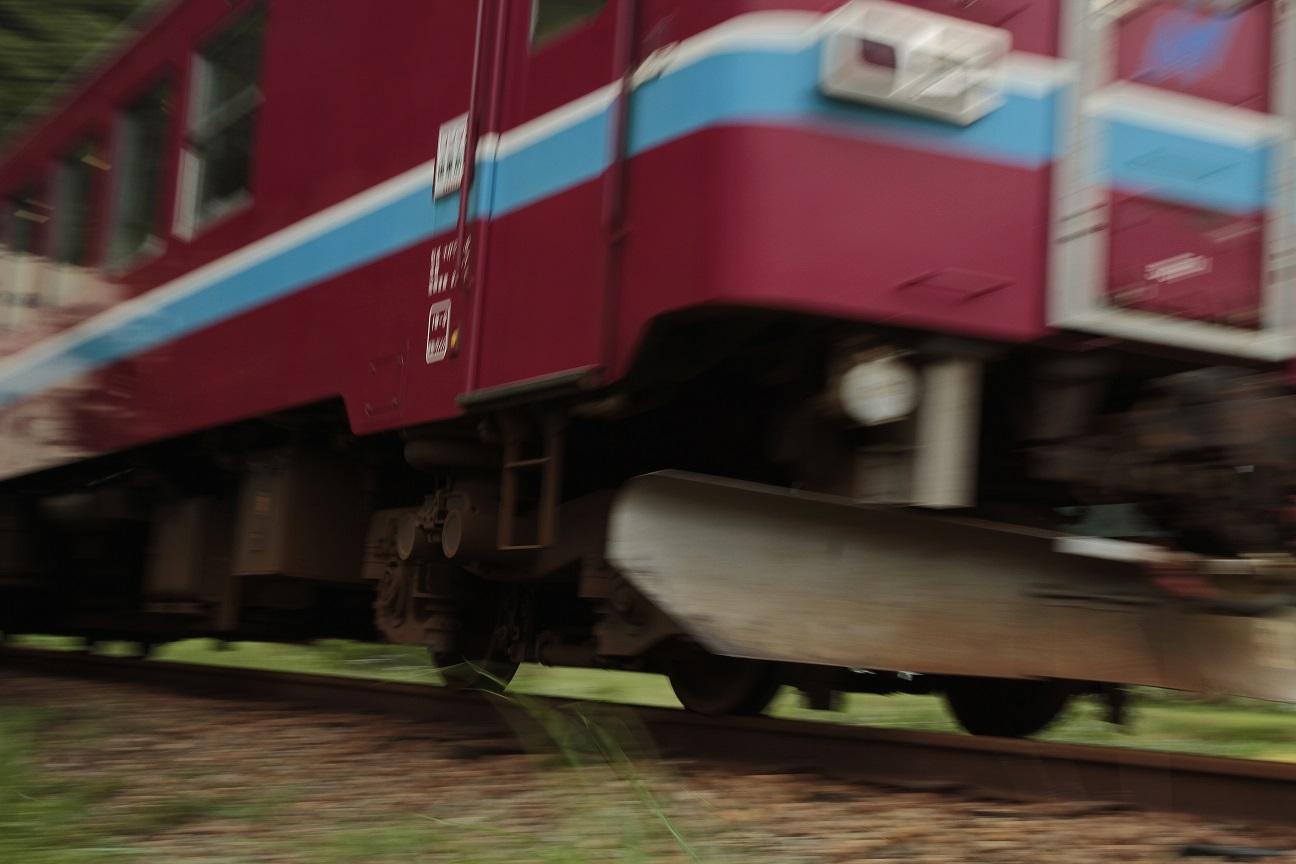 ブログ長良川鉄道1