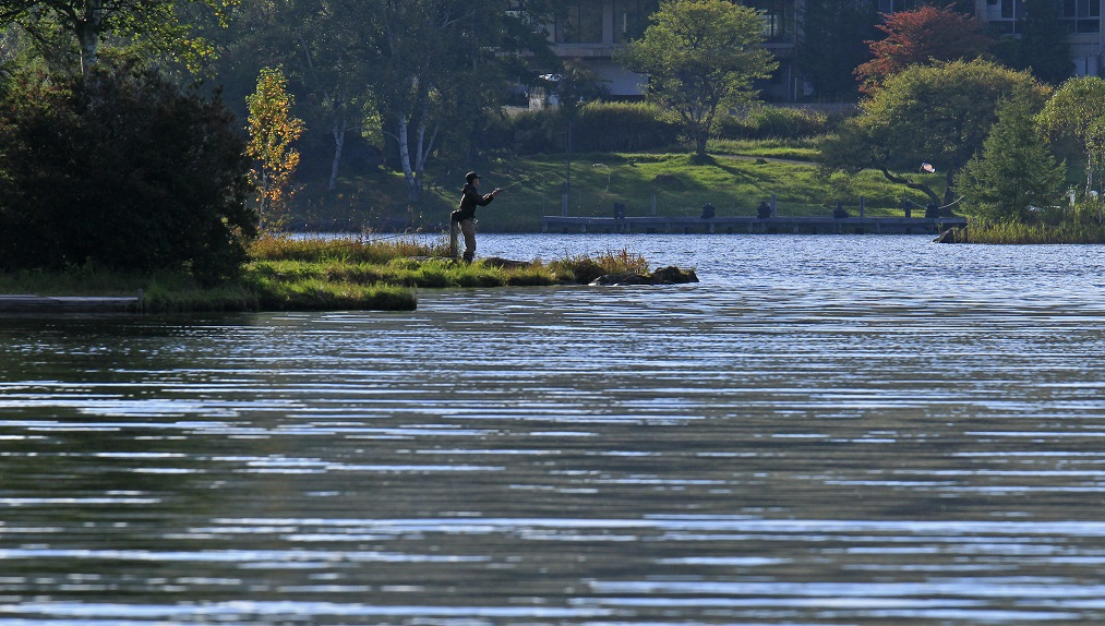 ブログ白樺湖釣り人