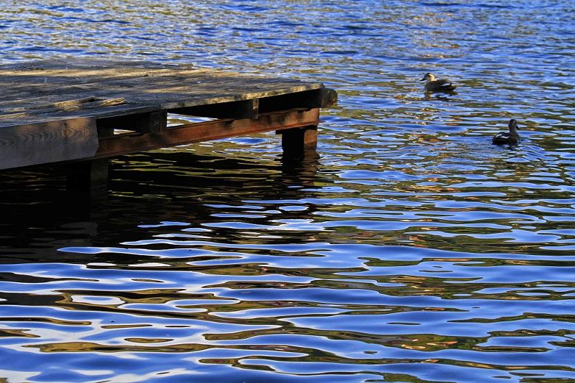 ブログ白樺湖西日2