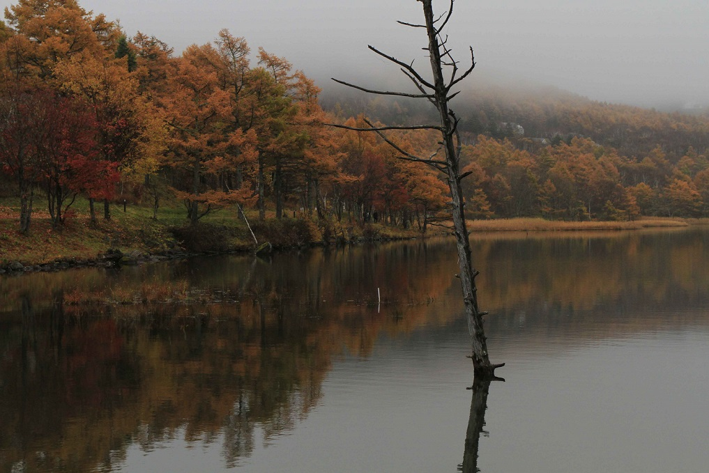 ブログ女神湖1