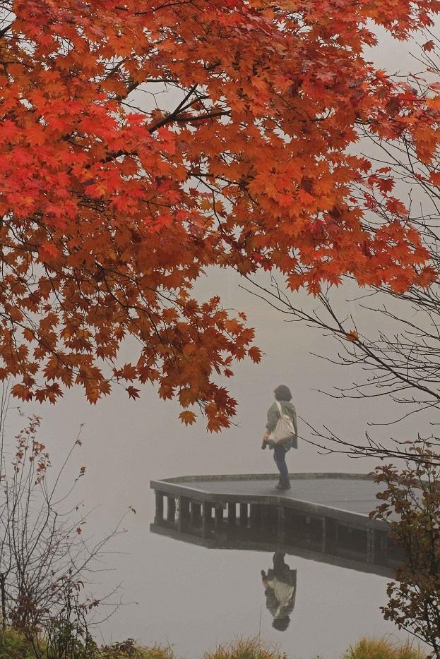 ブログ女神湖3