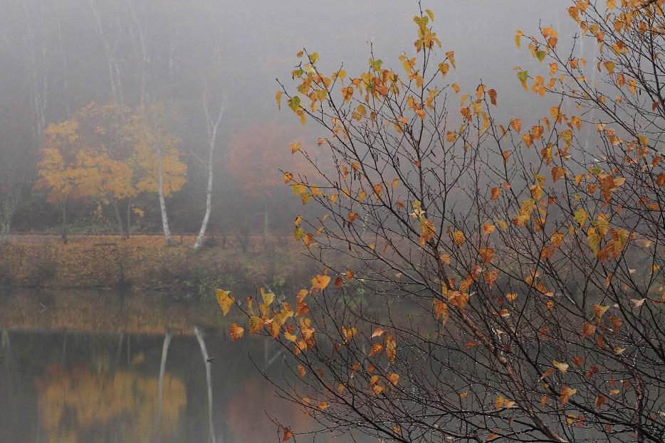 ブログ女神湖5