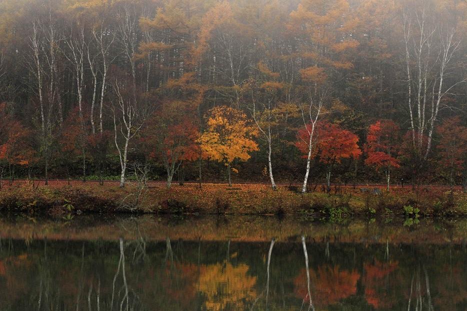 ブログ女神湖6