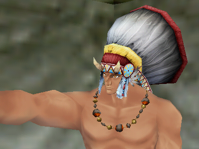 indian11.png