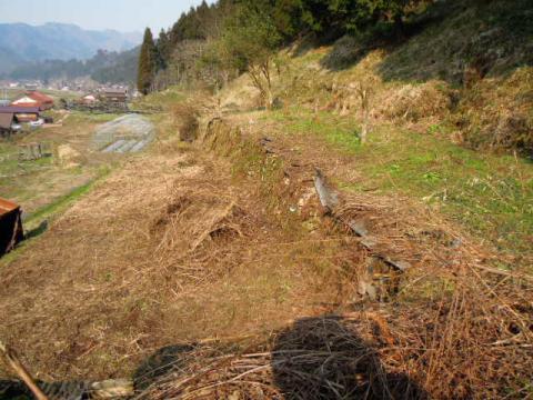 畑の開墾 途中