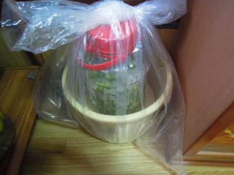 梅干しの作り方5