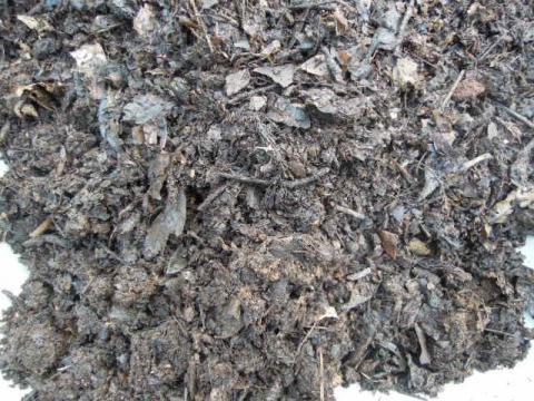 落ち葉で作った肥料