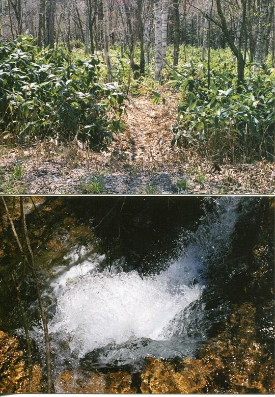 糸毛の滝 (3)