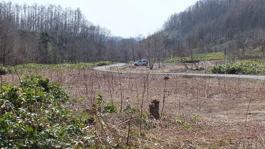 新登川炭鉱 (21)