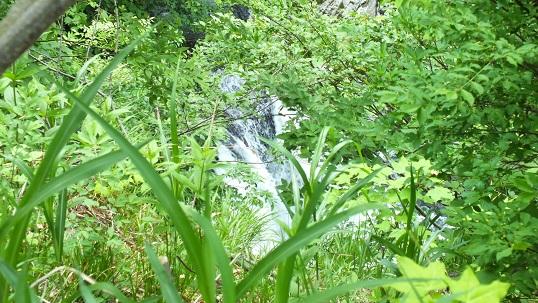 金花湯黄金の滝2
