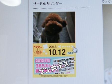 CIMG9573-cropあ