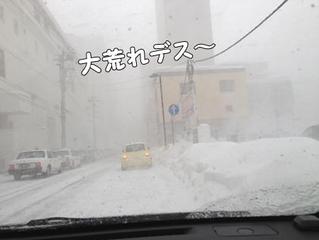 IMG_0104あ