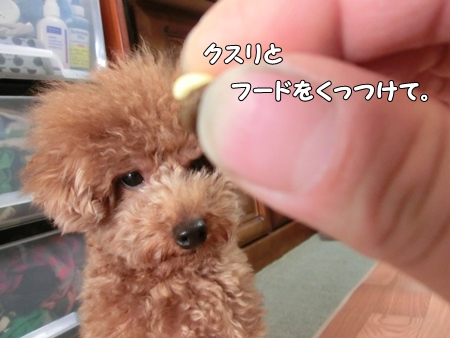 CIMG9748-cropあ