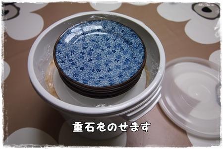 P3173055き