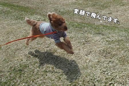 P4133827-cropあ