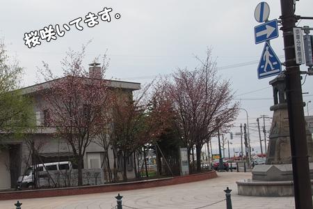 P5115232-cropあ