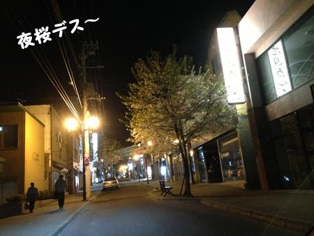 IMG_0555あ