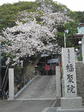 2013_0323_0041江南