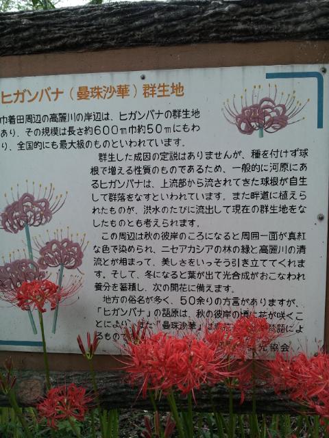 20120930_072434.jpg