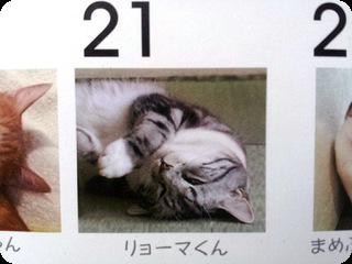 カレンダー リョーマ