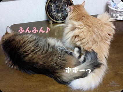 チャコ&奈々3