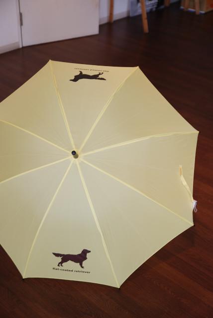 フラット傘