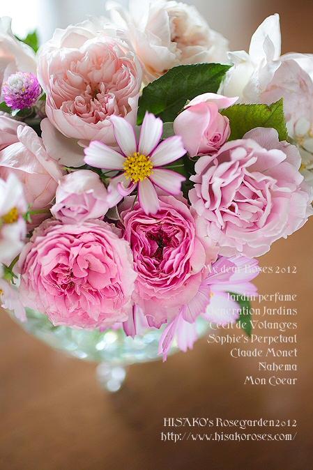 012roses1012IMG_0868.jpg