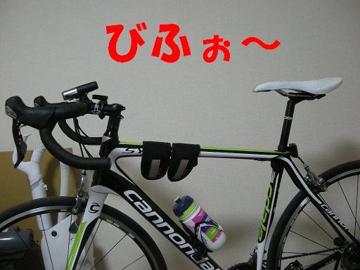 DSCN8294.jpg