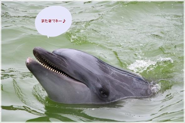 29_20130625200601.jpg