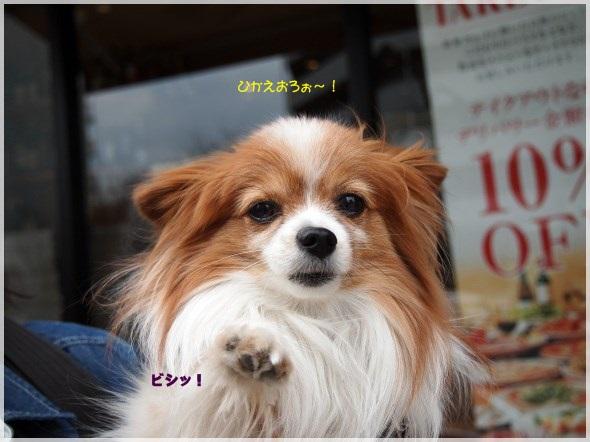 6_20130403211311.jpg