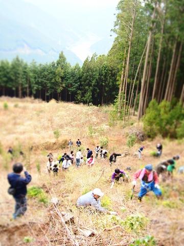 植林ツアー01