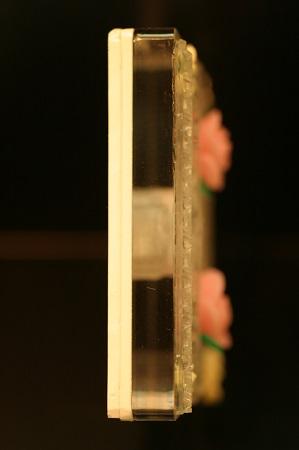 扉の_ヒス5