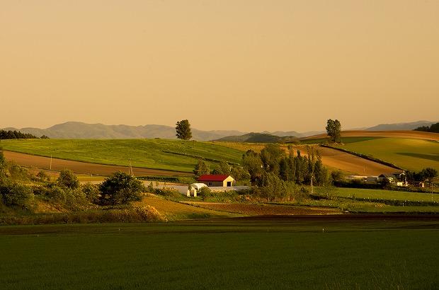 夕映えの丘