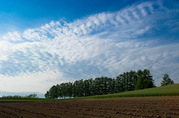 マイルドセブンの丘と空