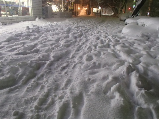 雪の帰り道 (4)