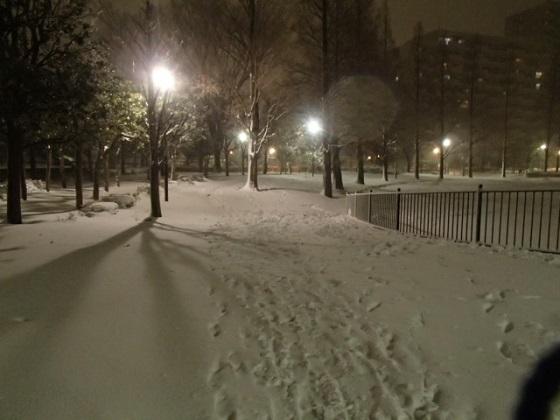 雪の帰り道 (8)