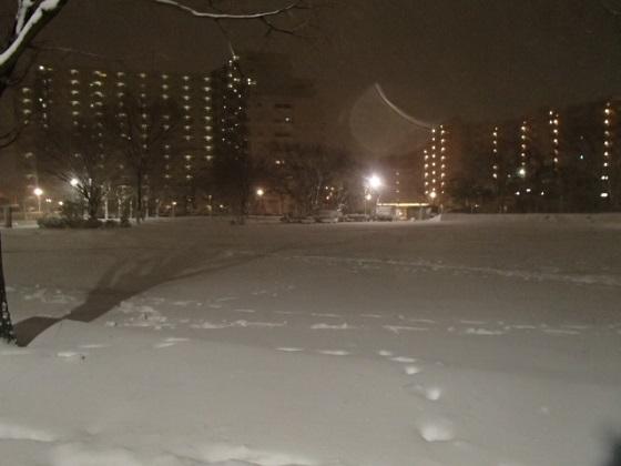 雪の帰り道 (10)